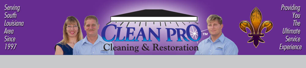 Cleanproheading2BR