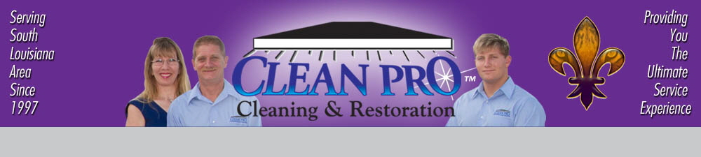 Upholstery Cleaning In Baton Rouge